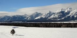 ab-winterwest0048