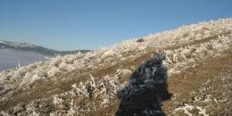 ab-winterwest0083