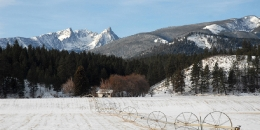 ab-winterwest0112