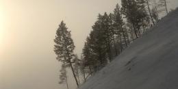 ab-winterwest0113