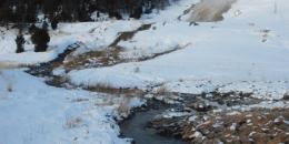 ab-winterwest0127