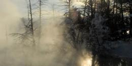 ab-winterwest0131