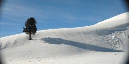 ab-winterwest0148