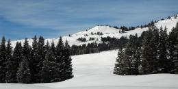 ab-winterwest0151